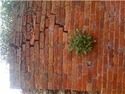 repair a 100-200 year old high garden brick wall