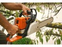 Landscape Gardener, Tree Surgeon, Groundworker in Teignmouth
