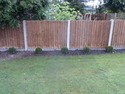 Fencer, Landscape Gardener, Tree Surgeon in London