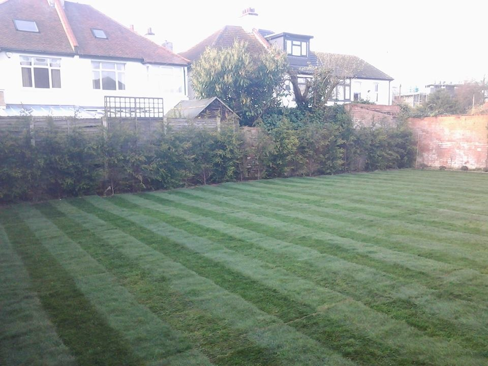 Landscape Garden Leigh On Sea : Mts landscaping ltd feedback landscape gardener fencer