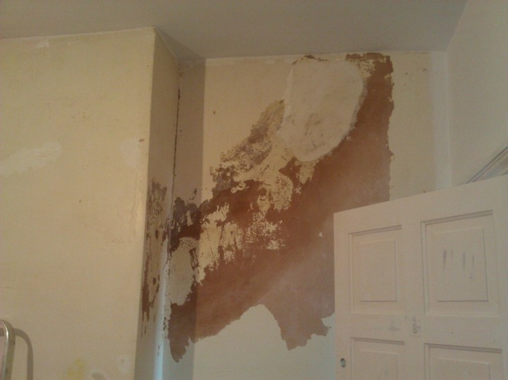 Damp on bedroom walls