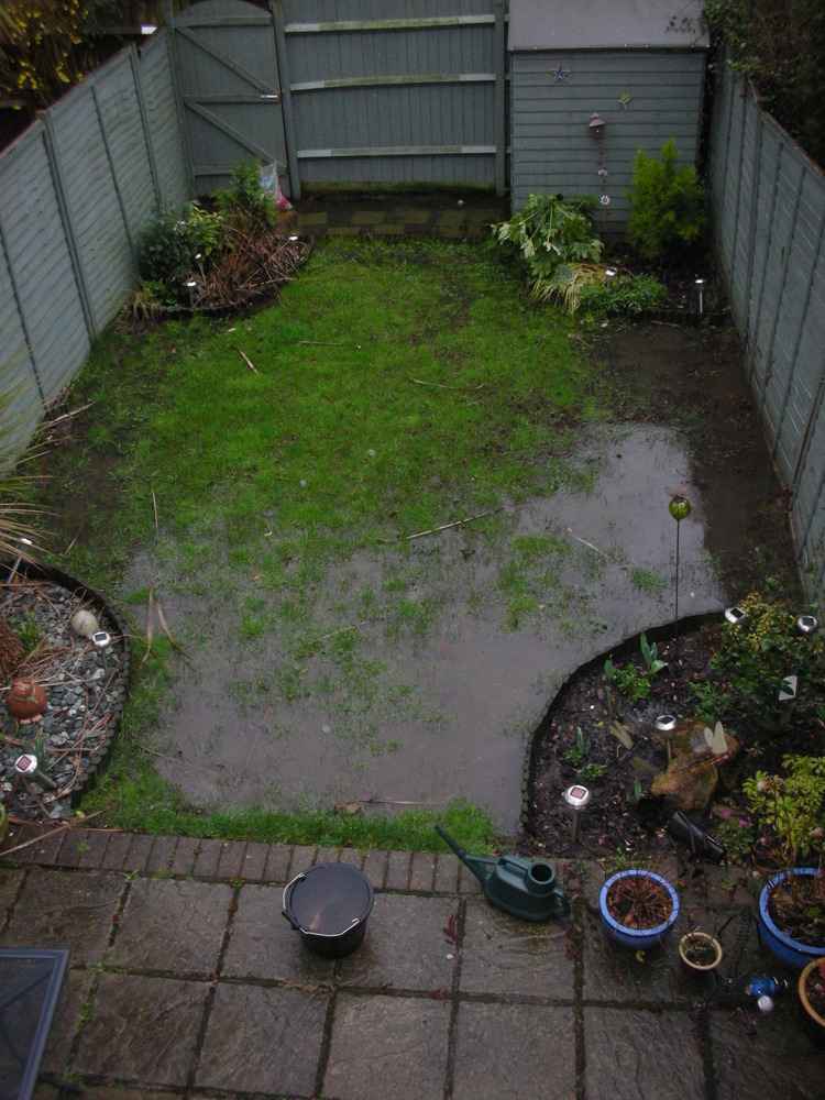 Garden Drainage Issues Lots Of Standing Water