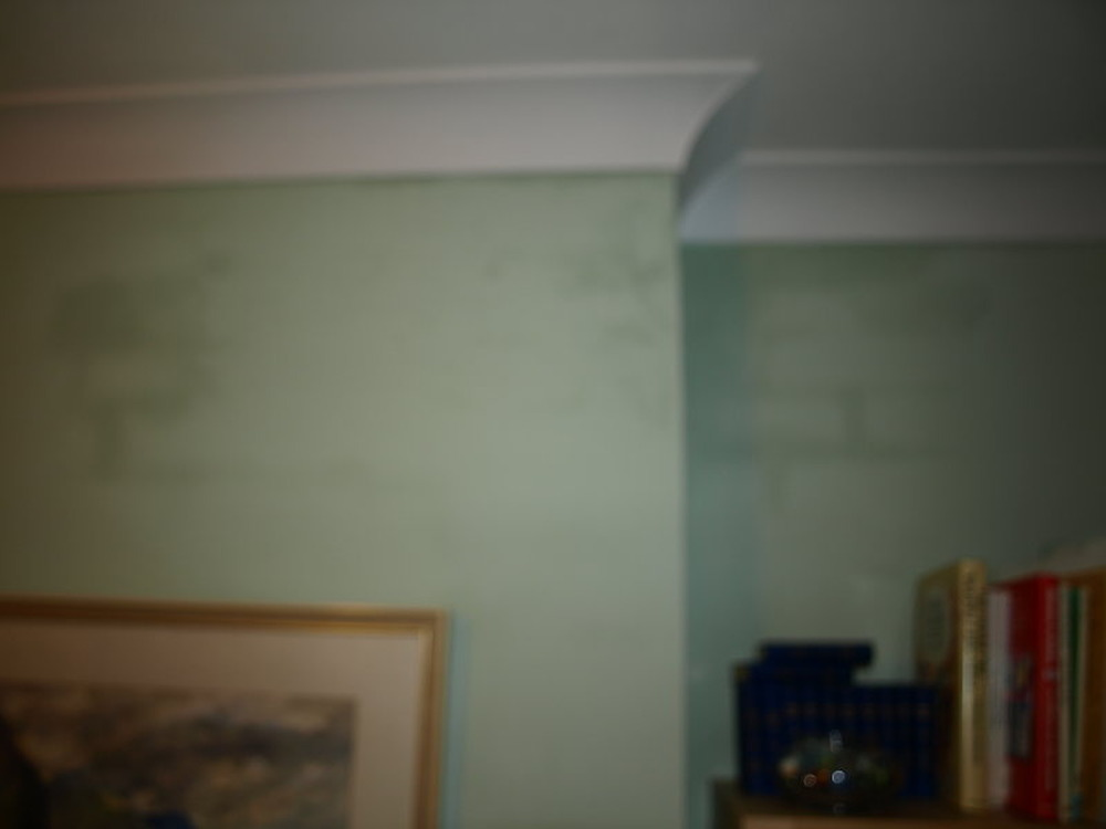 how to get damp out of walls