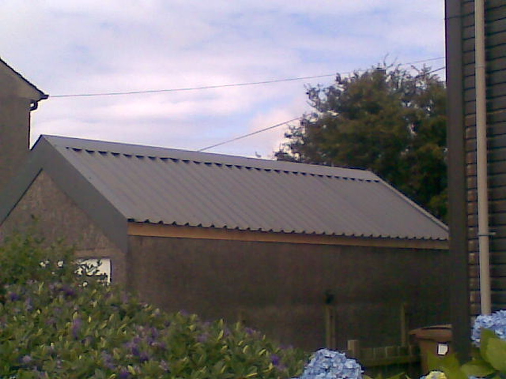 Ulisa Is My Shed Roof Asbestos