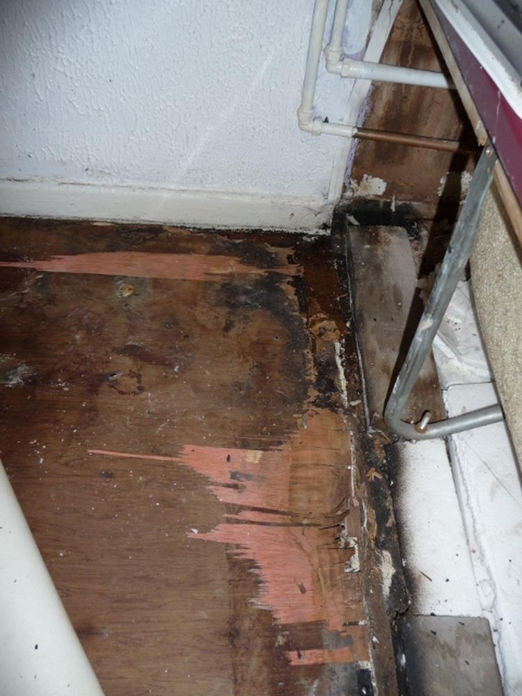 Bathroom floor repair water damage wood floors for Replacing hardwood floors
