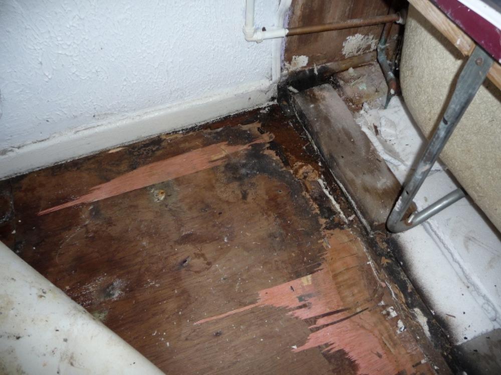 Bathroom floor repair water damage wood floors for Bathroom rebuild