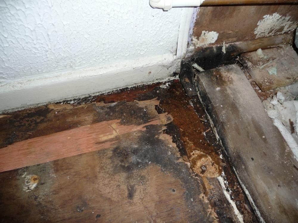 bathroom floor repair water damage wood floors