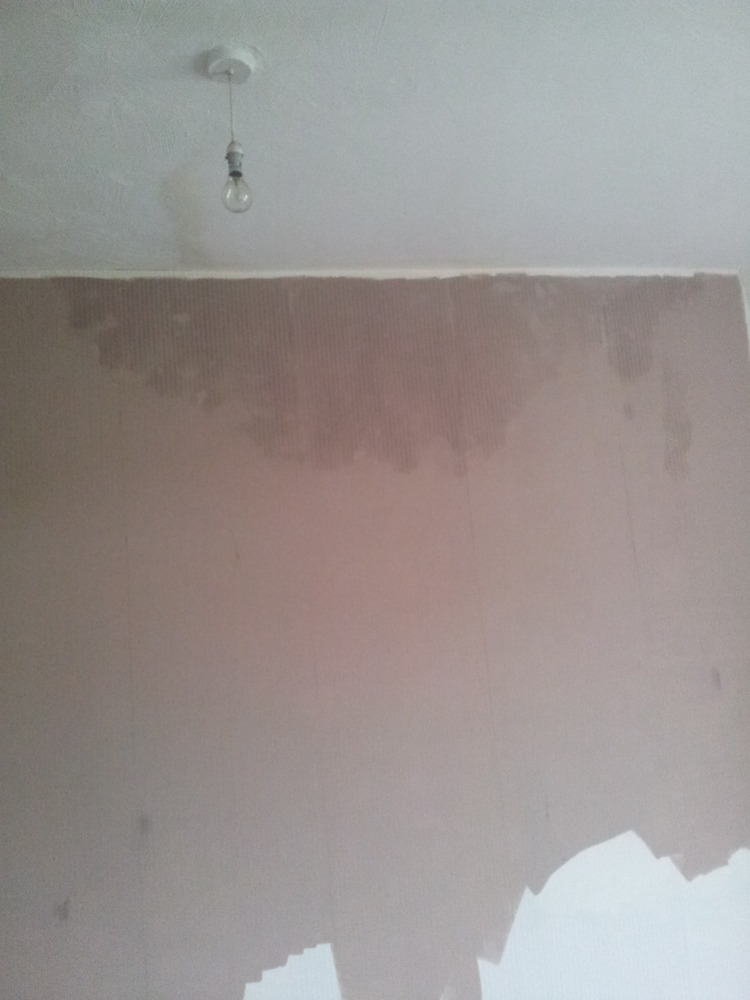 how to solve damp walls