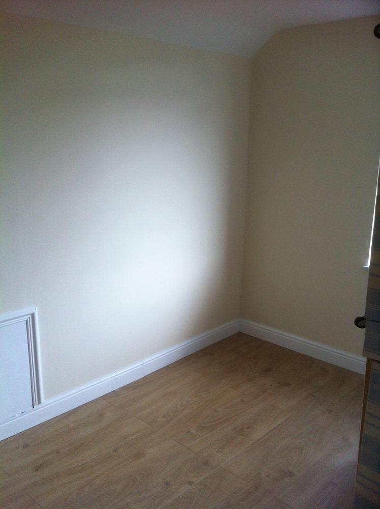Dna Interiors 100 Feedback Painter Amp Decorator Carpet